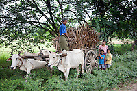 Farmer with family along the road to Pakkoku, Burma