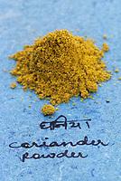 Asie/Inde/Maharashtra/Bombay : Les épices dans la cuisine indienne - Coriandre en poudre