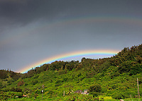 Rainbow above green trees on Pupukea Hill, North Shore, Oahu
