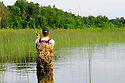 00416-032.03 Fishing: Angler is casting into ideal shoreline cover of bulrushes while wade fishing secluded lakeshore.  Bass, largemouth, lake.
