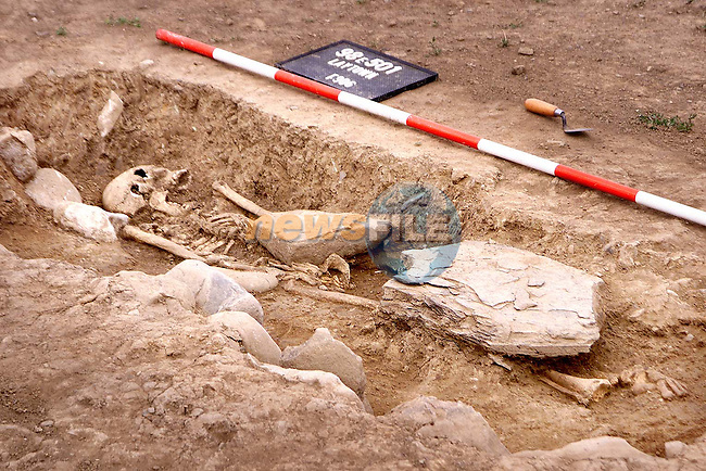 Some of the remains which were uncovered beside the Inse Bay building site in Laytown..Picture Paul Mohan Newsfile