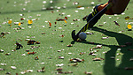 TILBURG  - hockey-  herfst  tijdens de wedstrijd Were Di-MOP (1-1) in de promotieklasse hockey dames. COPYRIGHT KOEN SUYK