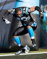 The Carolina Panthers played the San Francisco 49ers at Bank of America Stadium in Charlotte, NC in the NFC divisional playoffs on January 12, 2014.  The 49ers won 23-10.  Carolina Panthers defensive end Greg Hardy (76)