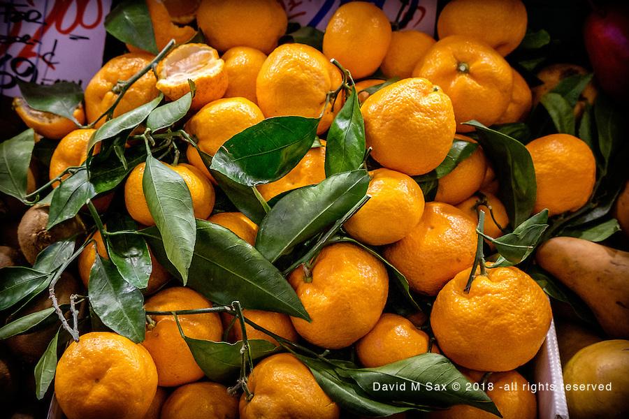 12.31.16 - Citrus...