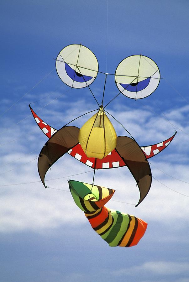 Bearded face kite wearing tie, Grayland, Washington