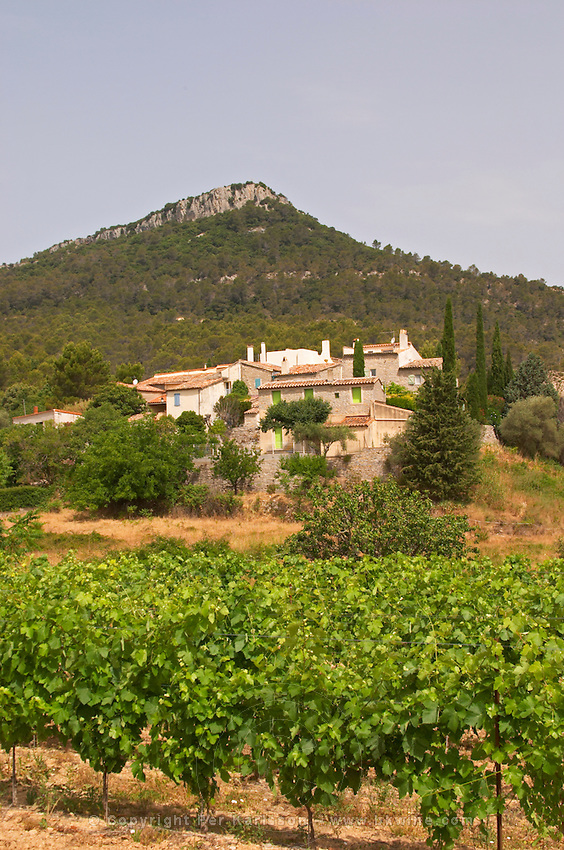 Lauret village in Pic St Loup district Pic St Loup. Languedoc. France. Europe.