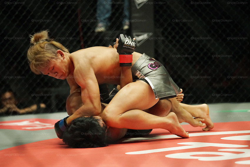 Riku Sibuya, Top Japanese Flyweight contender, beats up Eugene Toquero, Top Filipino flyweight<br /><br />MMA. Mixed Martial Arts &quot;Tigers of Asia&quot; cage fighting competition. Top professional male and female fighters from across Asia, Russia, Australia, Malaysia, Japan and the Philippines come together to fight. This tournament takes place in front of a ten thousand strong crowd of supporters in Pelaing Stadium. Kuala Lumpur, Malaysia. October 2015