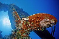 Prop at stern of Hilma Hooker (wreck), Bonaire, Caribbean