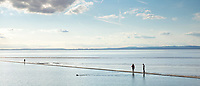 Dog swimming in marine lake by the sea watched by couple at Clevedon seaside, Somerset, England, UK