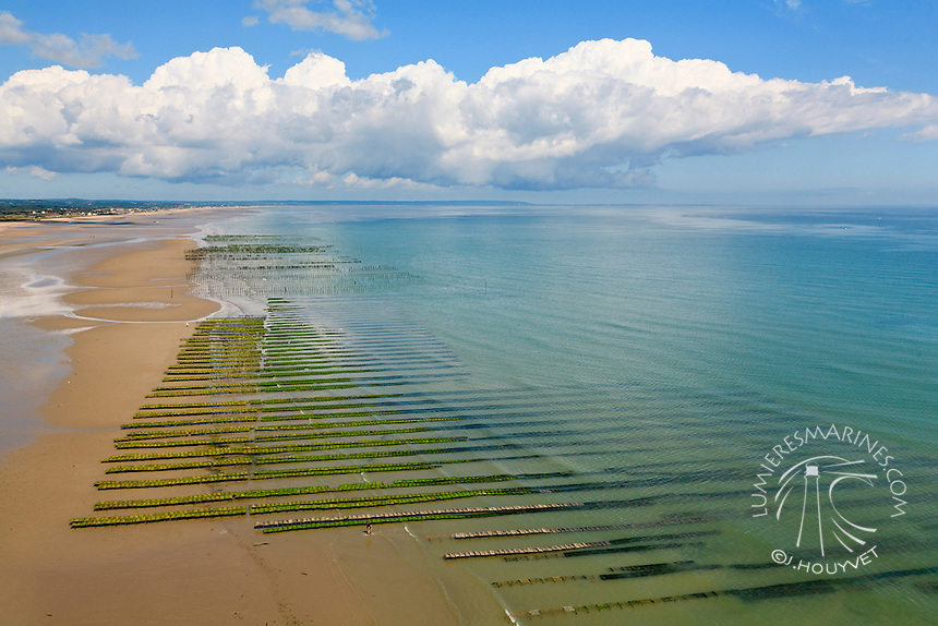 France, Normandie, Manche (50), Utah Beach, conchlyliculture (vue aérienne) // France, Normandy, Manche, Utah Beach (aerial view)