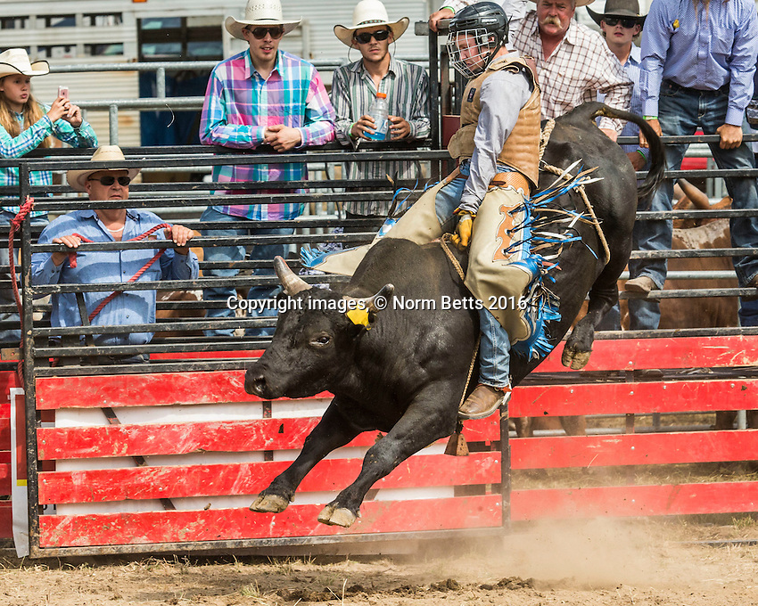 RAM Rodeo '16 July 29, 30, 31, 2016 Tweed, Ontario