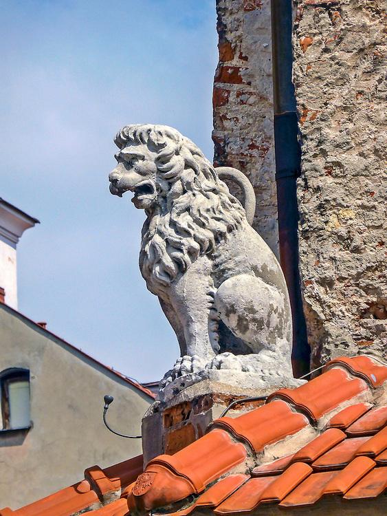Rzeźba lwa na renesansowej Kamienicy Pod Lwami (zwan też Kamienicą Cholewińską) w Lublinie