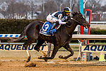 JAN 01, 2020 : Independence Hall with Jose Ortiz, win the $150,000 Jerome Stakes, for three year olds, at Aqueduct Racetrack, in Ozone Park, NY, January 01, 2020. Sue Kawczynski_ESW_CSM
