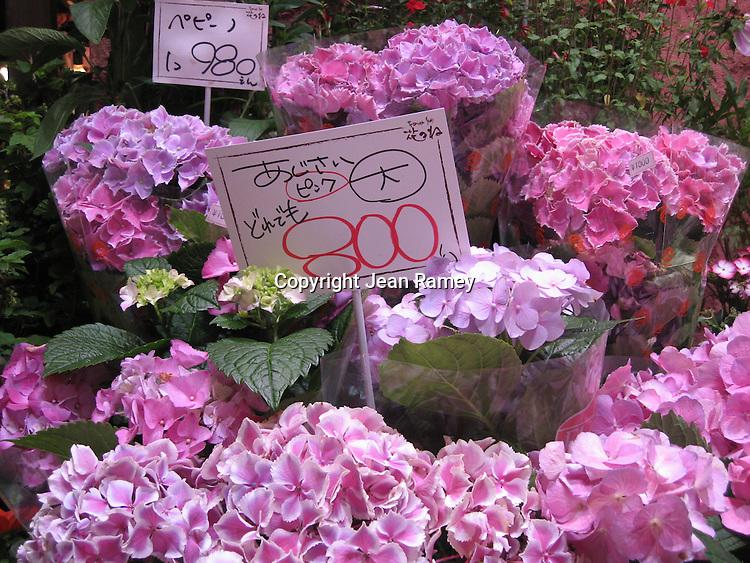Flower market, Kyoto