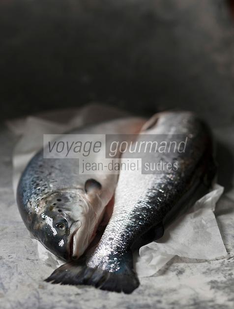 Europe/Norvège: Saumon de Norvège - Stylisme : Valérie LHOMME