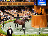 HIP 056, by Medaglia D'Oro out of Supercharger, $1.2 million.
