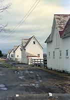Sanford Stud Farm - Hurricana Stock Farm, Amsterdam, NY