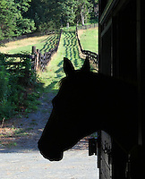 Horse barn in Albemarle County, Va.