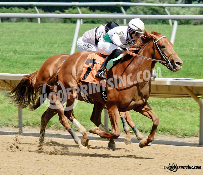 Pretty Syrie winning at Delaware Park racetrack on 6/5/14