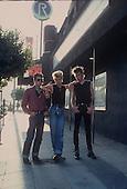 STRAY CATS (1981)