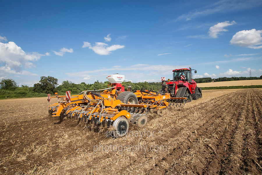 Cultivating oil seed rape stubble in Cambridgeshire, using Great Plains (Simba) SLD600 with Case 550 Quadtrac