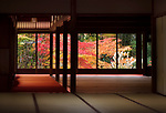 Traditional Japanese room interior with a beautiful colorful autumn nature scenery behind the windows. Tenjuan historic temple hall, Nanzen-ji complex in Sakyo-ku, Kyoto, Japan 2017 Image © MaximImages, License at https://www.maximimages.com