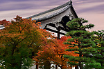 Autumn scenery of a Japanese garden in front of Tofukuji temple building. Tofuku-ji, Higashiyama-ku, Kyoto, Japan 2017.