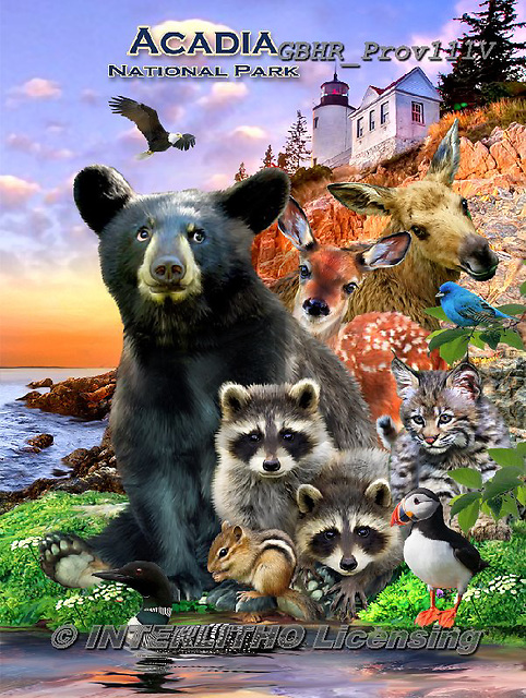 Howard, REALISTIC ANIMALS, REALISTISCHE TIERE, ANIMALES REALISTICOS, paintings+++++,GBHRPROV111V,#a#, EVERYDAY ,National Parks