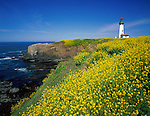 Lincoln County, OR<br /> Yaquina Head Light (1873) stands 93 ft tall above the headlands at Yaquina Head Outstanding Natural Area just north of Newport