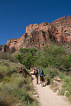 Hikers leaving Indian Gardens Campground and ascending the Bright Angel Trail to the South Rim, Grand Canyon National Park, Arizona. .  John leads hiking and photo tours throughout Colorado. . John offers private photo tours in Grand Canyon National Park and throughout Arizona, Utah and Colorado. Year-round.