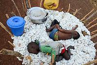 BURKINA FASO: cotton is back