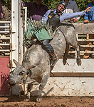 Bull Rider Colton Humphries from Fairview, Utah at the 62nd annual Mother Lode Round-up on Sunday, May 12, 2019 in Sonora, California.  Photo by Al Golub