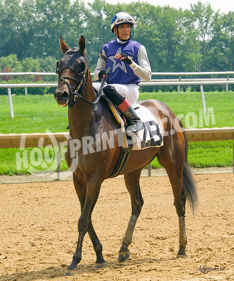 Racetrack Romance winning at Delaware Park on 8/14617