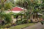 Lumholtz Lodge Bed and Breakfast and home of Margit Cianelli - tree kangaroo wildlife carer.