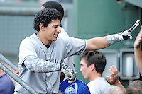 Catcher Jose Briceno (4) of the Asheville Tourists is congratulated after scoring a run in a game against the Greenville Drive on Sunday, July 20, 2014, at Fluor Field at the West End in Greenville, South Carolina. Briceno is the No. 29 prospect of the Colorado Rockies, according to Baseball America. Asheville won game one of a doubleheader, 3-1. (Tom Priddy/Four Seam Images)