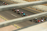 The peloton during Stage 4 of 10th Tour of Oman 2019, running 131km from Yiti (Al Sifah) to Oman Convention and Exhibition Centre, Oman. 19th February 2019.<br /> Picture: ASO/K&aring;re Dehlie Thorstad | Cyclefile<br /> All photos usage must carry mandatory copyright credit (&copy; Cyclefile | ASO/K&aring;re Dehlie Thorstad)
