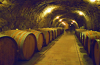The Chateau Dereszla winery: the underground cellar. A tunnel with barrels of Tokaji wine. People moving in the backrgound . Dereszla is owned by Edonia, a French (Bordeaux) négociant (wine trading) company. Major renovations are being done. Credit Per Karlsson BKWine.com
