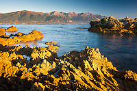 Sunrise on rocky shore of Kaikoura coastline with Seaward Kaikouras mountains in background, Kaikoura, Marlborough Region, South Island, East Coast, New Zealand