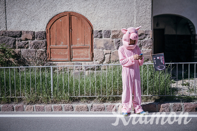 pink 'fan' texting his location to his mates so they can record it on tv... (probably)<br /> <br /> Stage 18: Moena › Ortisei/St. Urlich (137km)<br /> 100th Giro d'Italia 2017