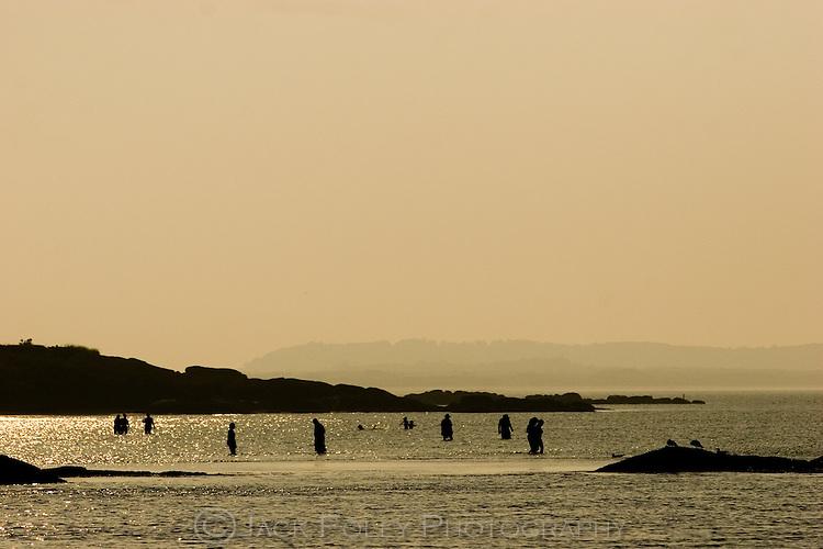Annisquam River at low tide.