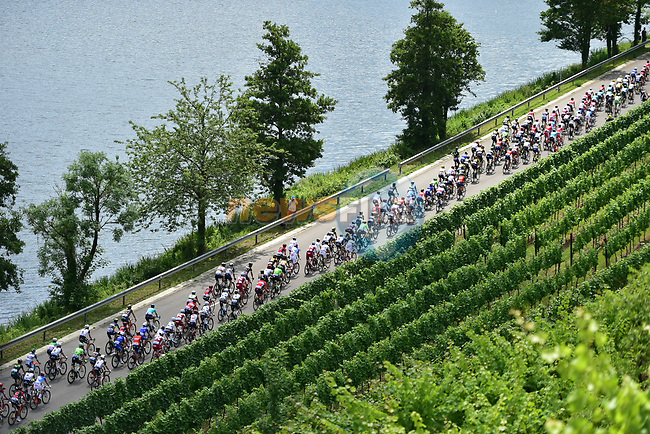 The peloton in action during Stage 4 of the 104th edition of the Tour de France 2017, running 207.5km from Mondorf-les-Bains, Luxembourg to Vittel, France. 4th July 2017.<br /> Picture: ASO/Pauline Ballet   Cyclefile<br /> <br /> <br /> All photos usage must carry mandatory copyright credit (&copy; Cyclefile   ASO/Pauline Ballet)