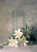 Helga, SYMPATHY, photos, 3 white lilies(DTTH80372,#T#) Beileid, condolación
