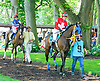 Lovely Athena with Celina Weberaboard in the paddock before the Longines International Ladies Fegentri Amateur race at Delaware Park on 6/8/15