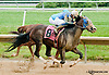 Early Eddie winning at Delaware Park on 7/13/13