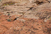 Red Rock Canyon, Nevada.  Red Sandstone showing  Cross-bedding from ancient Sand Dunes, along Trail to Calico Tanks.  Desert Varnish on stone, lower right.