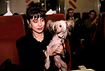 'CRUFTS', JANEAVE NAYLOR ON THE TRAIN HOME WITH HER CHINESE CRESTED HAIRLESS POOCH CALLED 'MOONSWIFT MOSAIC'., 1991