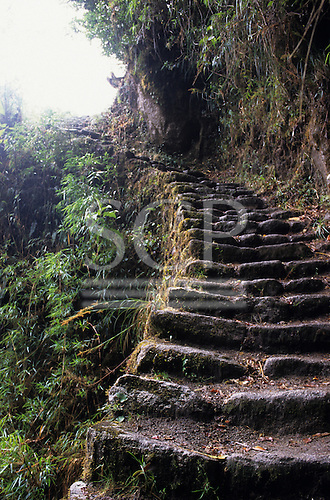 Phuyupatamarca to Winaywina, Peru. Inca mountain roadway/steps on the Inca Trail to Machu Picchu.