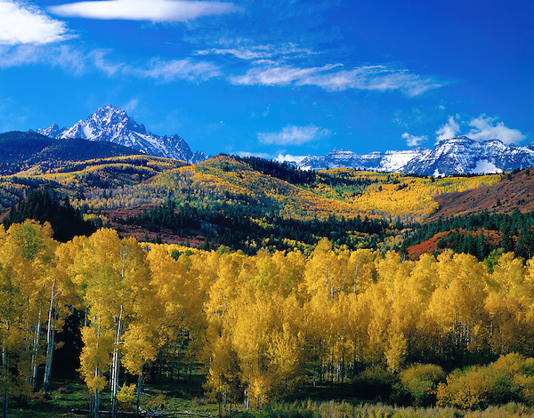 Autumn Aspen forest with Mount Sneffels (left) and Dallas Peak (right),  San Juan Mountains, Telluride, Colorado, USA. John offers autumn photo tours throughout Colorado.