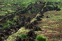Peat bog with piles of cut turf used for fuel and heating, Ireland
