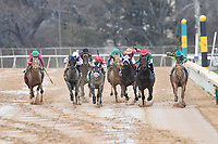HOT SPRINGS, AR - FEBRUARY 19: Hwaakom #3 (far right) ,with jockey Corey Lanerie passing on inside for the lead in the  Razorback Handicap at Oaklawn Park on February 19, 2018 in Hot Springs, Arkansas. (Photo by Ted McClenning/Eclipse Sportswire/Getty Images)